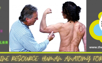 New! Human Anatomy for Artists – Online Learning