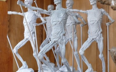 Ecorche figures – new to The Sculpture School